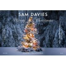 Tree Lights Personalised Christmas Sparkling Rosé Label